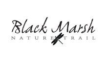 Black Marsh Nature Trail